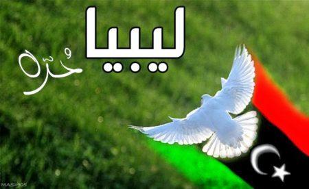علم دولة ليبيا (3)