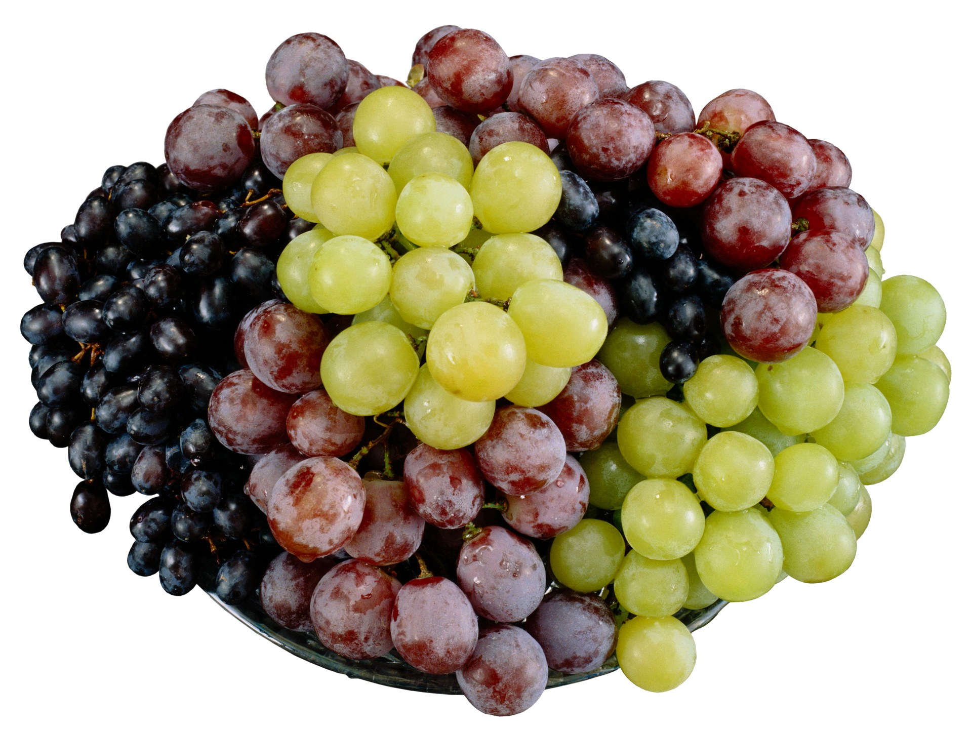 """نتيجة بحث الصور عن العنب الأسود في صقلية"""""""