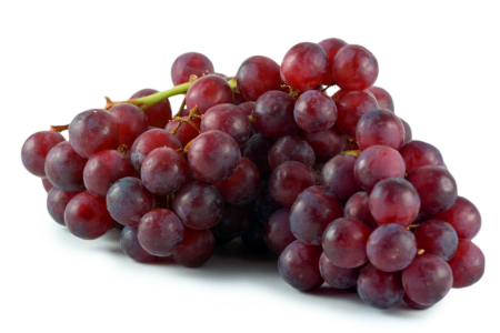 grapes photos (1)