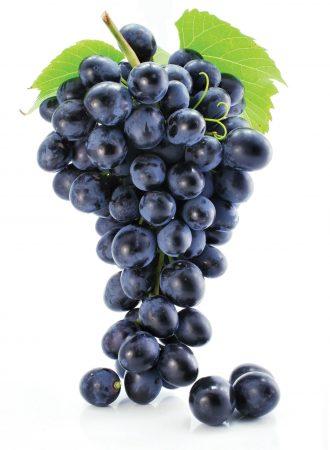 grapes photos (2)