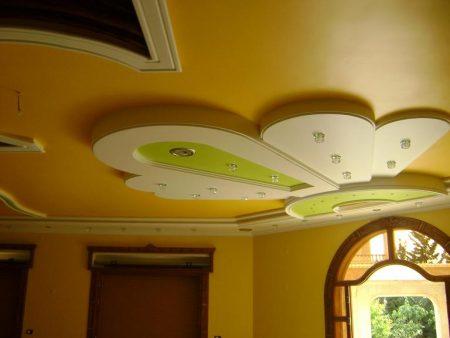 اسقف معلقة (1)