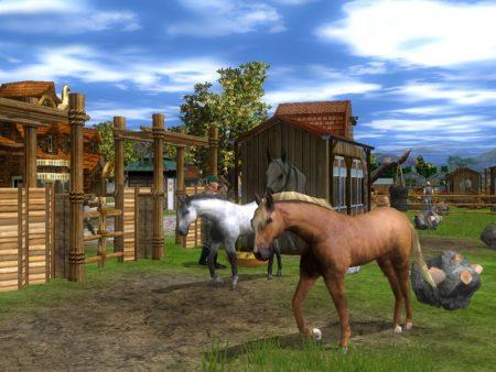 رمزيات خيول جديدة صور رمزيات خيل بجودة HD (3)
