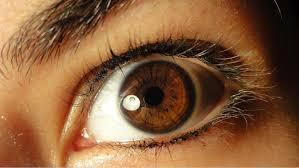 خلفيات عيون عسلي (4)