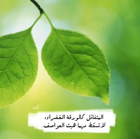رمزيات 2017 حلوة (3)