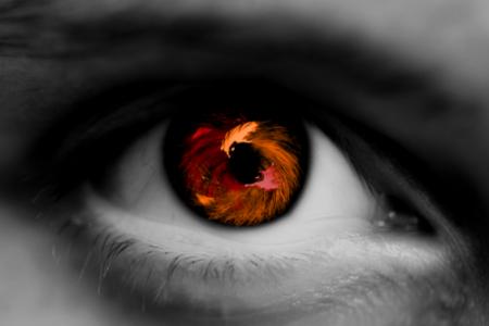صور عيون عسلي (2)