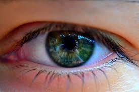 عين خضراء بالصور (1)