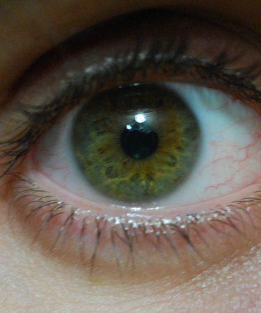 عين خضراء بالصور (3)