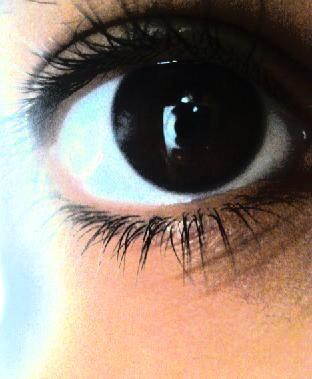 عيون باللون الاسمر (1)