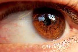 عيون عسلية جميلة روعة (2)