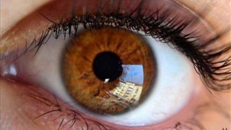 عيون عسلية (1)