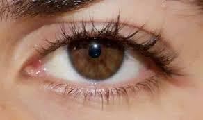 لون عيون عسلي بالصور (1)