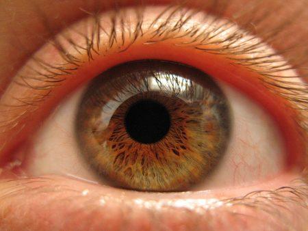 لون عيون عسلي بالصور (4)