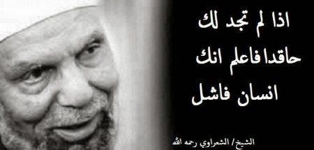 صور محمد متولي الشعراوي (2)