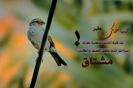 بطاقات صباح الخير (3)
