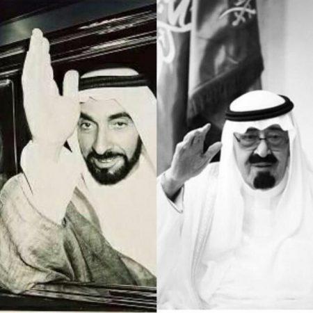 خلفيات وصور الشيخ زايد (2)