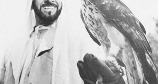 صور الشيخ زايد رمزيات وخلفيات الشيخ زايد (1)