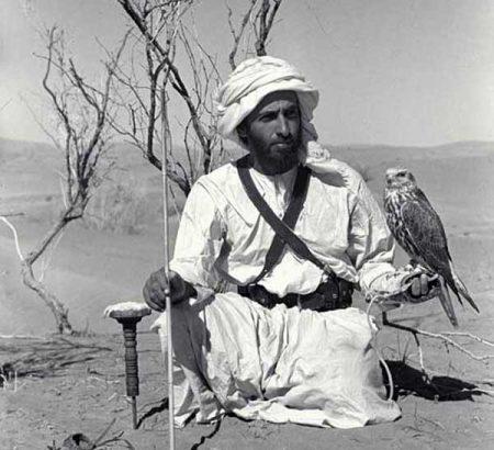 صور الشيخ زايد (2)