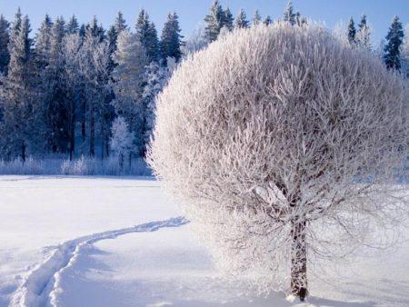 صور عن الشتاء 2018 رمزيات وخلفيات شتاء HD (3)