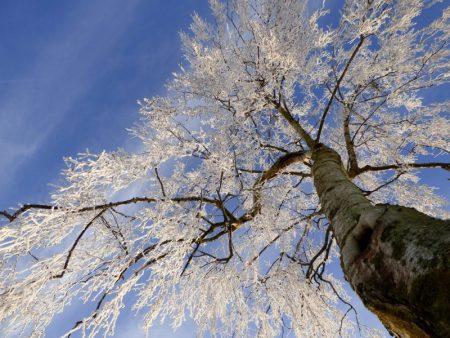 صور عن الشتاء hd (3)