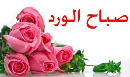 رمزيات صباح الورد (2)