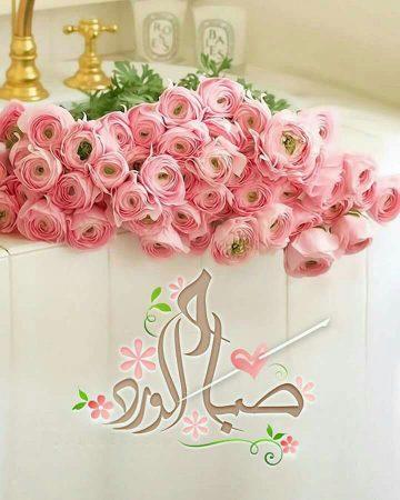 رمزيات صباح الورد (3)