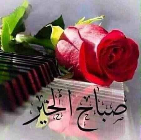 صباح الورد رمزيات انستجرام صباحية (1)