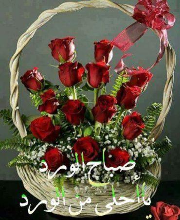 صباح الورد رمزيات تويتر صباحية (2)