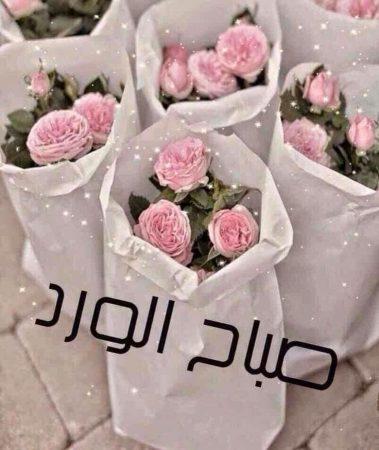 صباح الورد رمزيات وخلفيات (1)