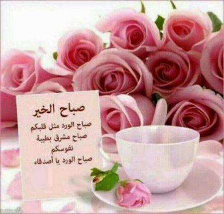 صباح الورد رمزيات وخلفيات (2)