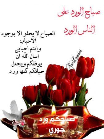 صباح الورد صور (1)