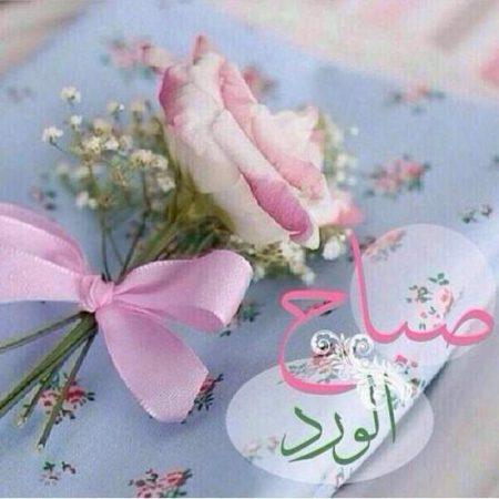 صباح الورد (1)