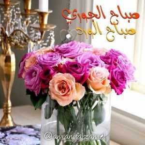 صباح الورد (2)