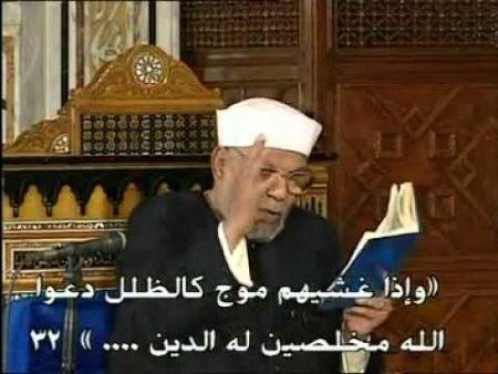 صور الشيخ الشعراوي (2)