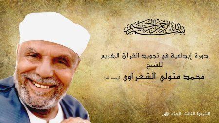 محمد متولي الشعراوي (2)