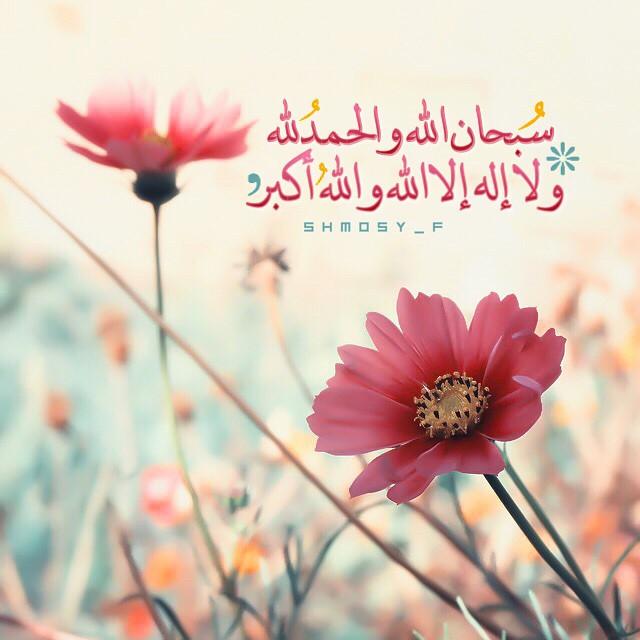 صور اسلامية دينية (3)
