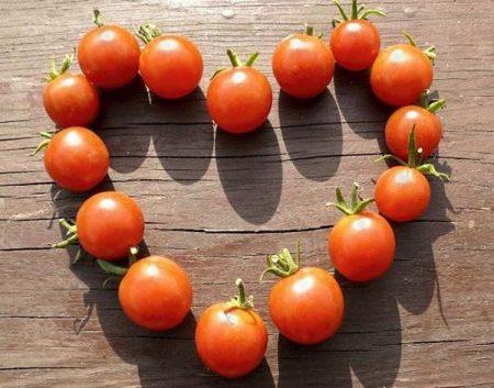 طماطم صور الطماطم (2)
