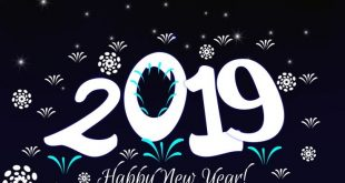 happy new year 2019 (2)