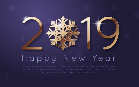 happy new year 2019 photos