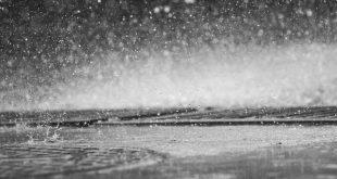 صور قطرات مطر 1
