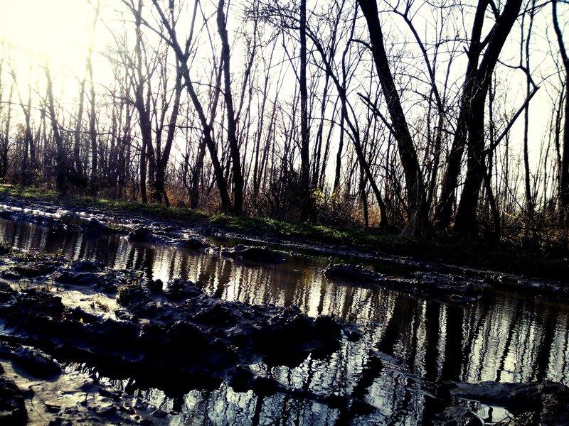 صور جميلة عن المطر 1