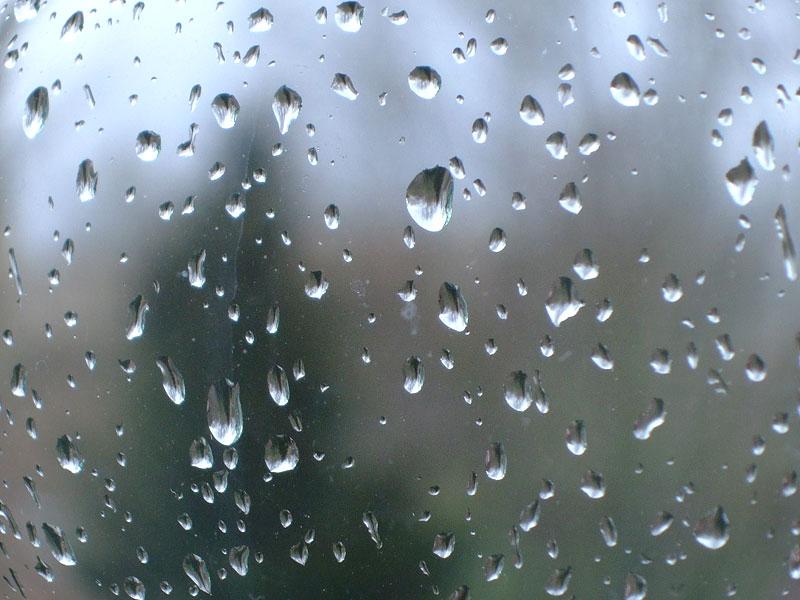 صور قطرات المطر 2
