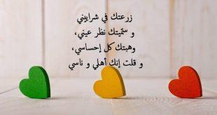 كلام عن الحب